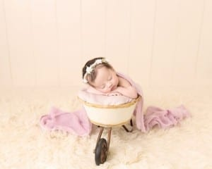 Newborn Photography Akron