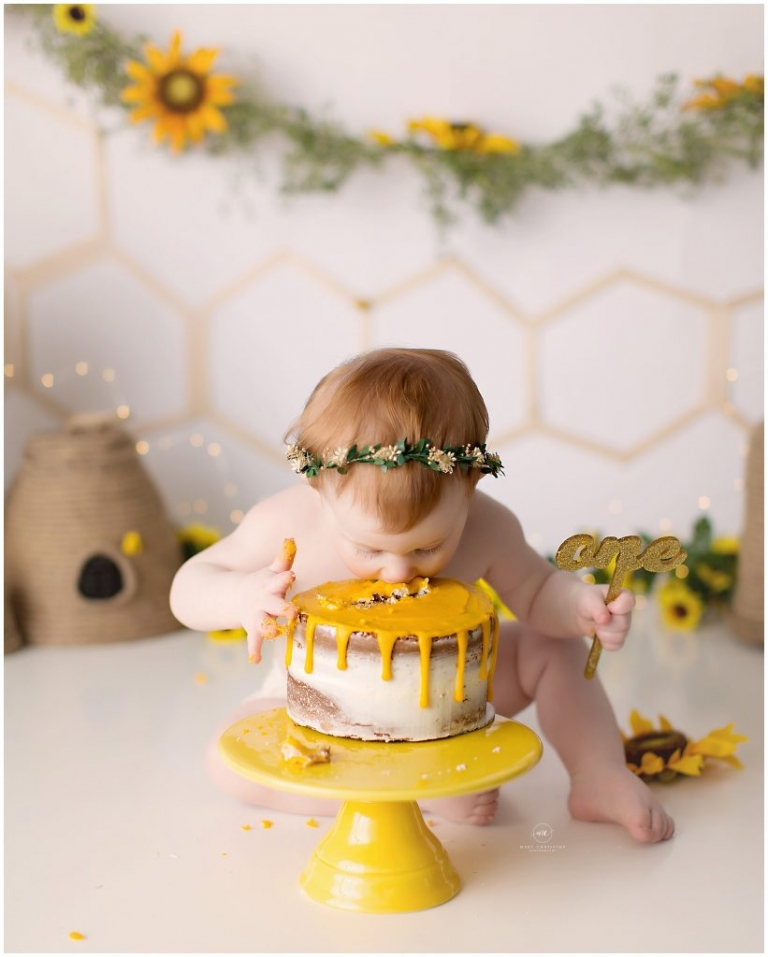 first birthday photos